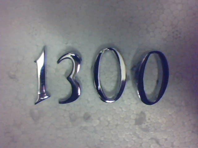 Bin Üç Yüz